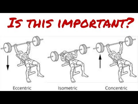 How to use Eccentric, Concentric, Isometric Exercise What that means Muscle Force Production