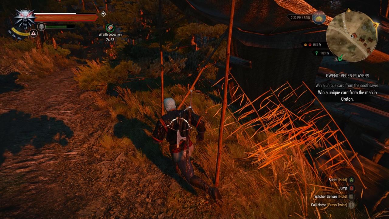 the witcher 3 wild hunt  gwent velen players