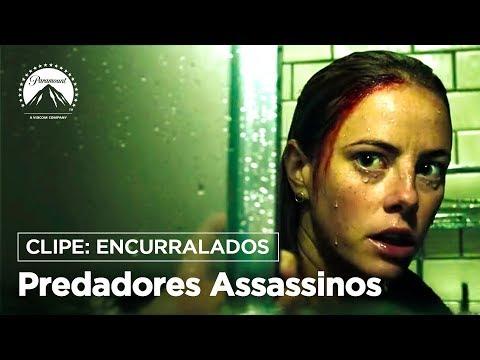 'Predadores Assassinos': Kaya Scodelarioé encurralada por Jacaré em clipe