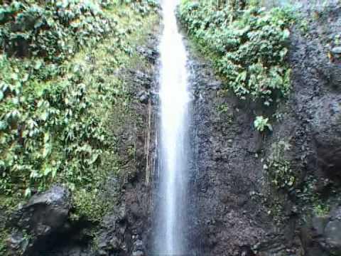 Jungle walk to water falls in the Raiatea Island in French Polynesia 2008