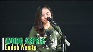Gambar cover WONG SEPELE - Ndarboy Genk   Cover Akustik Oleh Endah Wasita