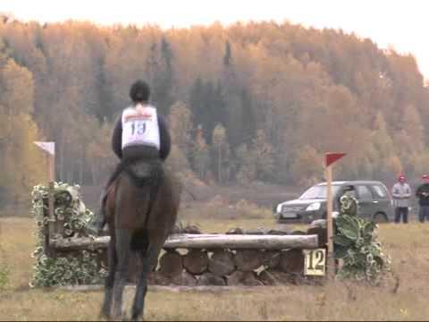 конное троеборье видео