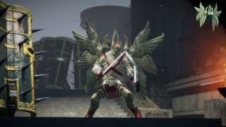 Path of Exile: Pure Light Wings