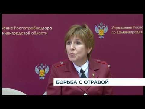 В Калининграде изъяли никотиновые конфеты изготовленные в самарской квартире