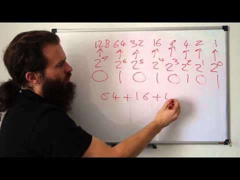 Number systems: Decimal, Binary, and Hexadecimal