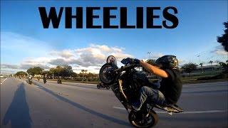 Killers On The Streets!  Orlando Stunt Ride 2016 Edit
