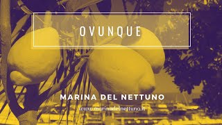 OVUNQUE - Spot Marina del Nettuno