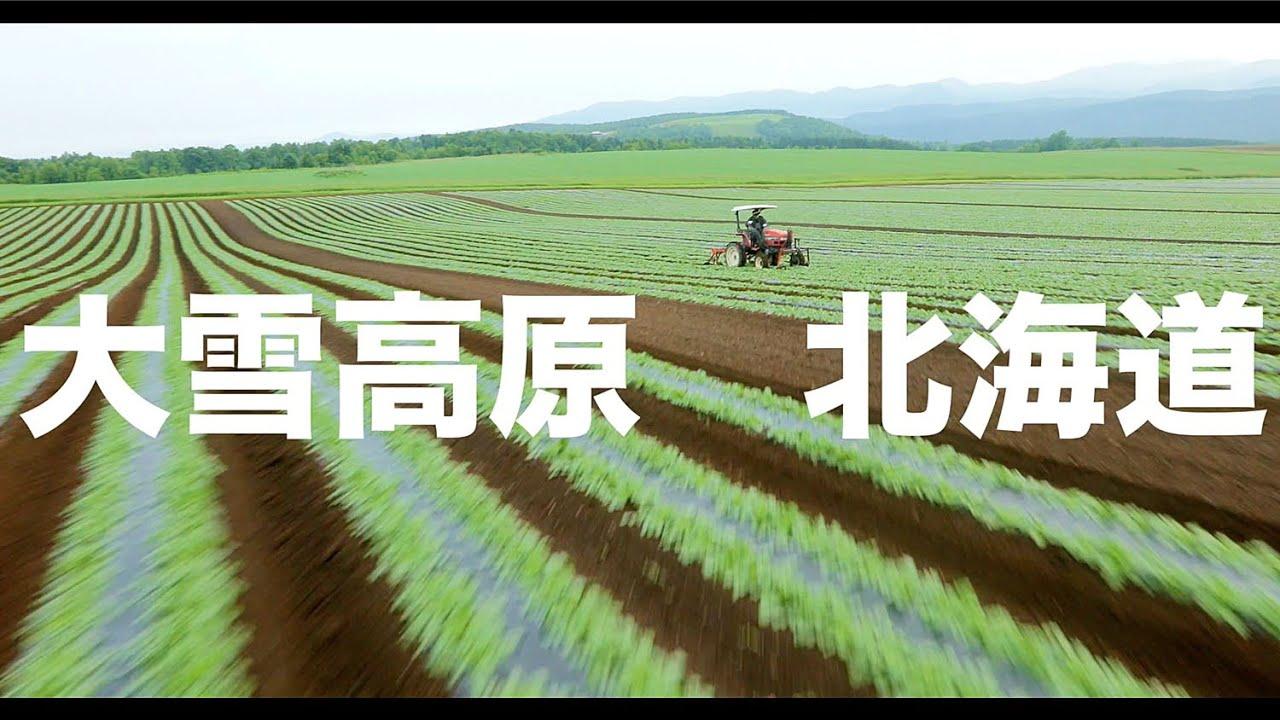 【空の旅#15】「お仕事中に失礼します。ボク飛んでてすみません」空撮・多胡光純 北海道_Hokkaido aerial