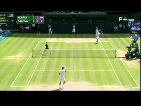 Andy Murray   Grigor Dimitrov  Wimbledon 2014