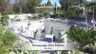 Pool Remodel:  Stonescape Mini Pebble, Pool Tank Filter, LED, tile, Installation