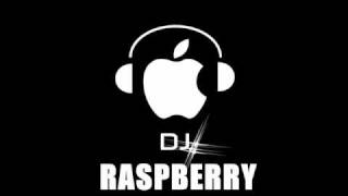 DIRTY ELECTRO HOUSE 2011 RottenBerryMix DJ Raspberry