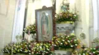 Mañanitas a la Virgen de Guadalupe.Tala,Jalisco.