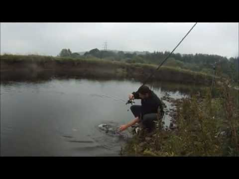 Fishing The River Aire