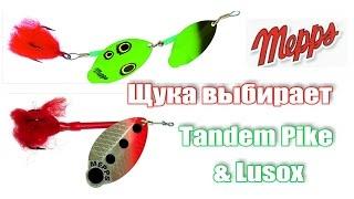 Щука выбирает - #Mepps #Tandem Pike & #Lusox  Ну очень клюет! Осенняя щука!
