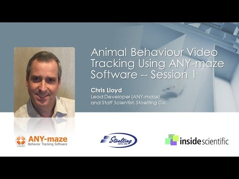 Animal Behavior Video Tracking Using ANY-maze Software -- Session 1