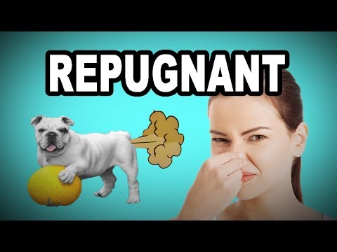 💩 Learn English Words - REPUGNANT - Meaning, Vocabulary with Pictures and Examples