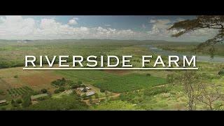 RIVERSIDE FARM & ONE DAY CHURCH