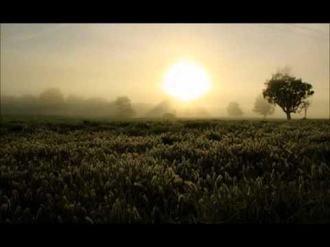 Bob Dylan-New Morning