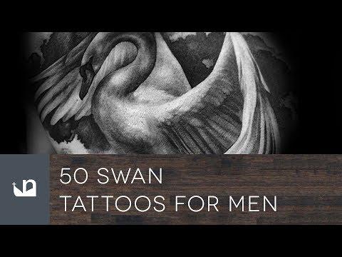 50 Swan Tattoos For Men