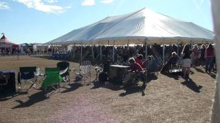 Clearwater Kennel Club Dog Show (brooksville, Fl - 1/21/11): Dalmatians - Best Of Breed