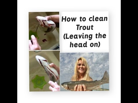 How to clean trout leaving the head on