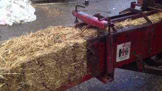 for sale ih 430 baler test pbyrnetractors com