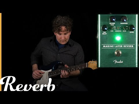 Fender Marine Layer Reverb  Reverb Tone Report