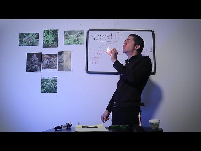 WEED 101 | WEED ASMR |