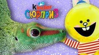 Невероятные превращения фруктов и овощей в животных (Английский для детей)