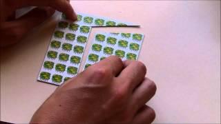Cómo hacer el efecto óptico o ilusión...