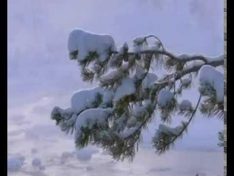 Верасы - Белый снег (Легенды Ретро FM 2008)