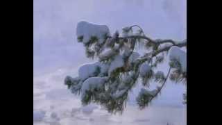 Верасы - Завируха (Белый снег)