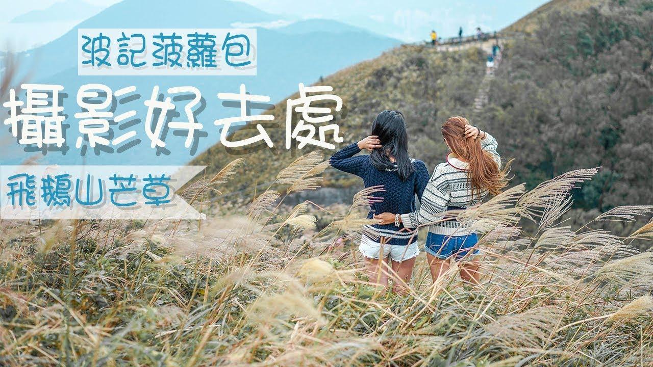 香港攝影好去處 4 の飛鵝山芒草 不一定要到大東山 交通方便hong Kong Photography Spot Youtube