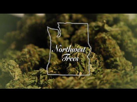 Marijuana Documentary - Northwest Trees (2016)