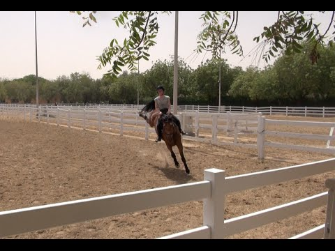River's First Canter Under Saddle