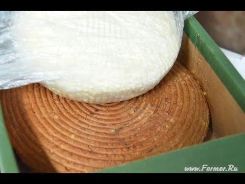 Адыгейский сыр - бренд Республики Адыгея. КФХ Михаила Исакова. г. Майкоп