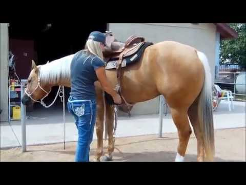 SKIP N MAGIC AQHA Palomino mare for sale