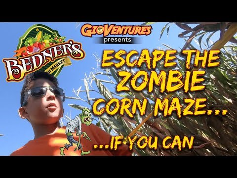 Halloween Zombie Corn Maze, Pumpkin Patch, and More at Bedner's Farm