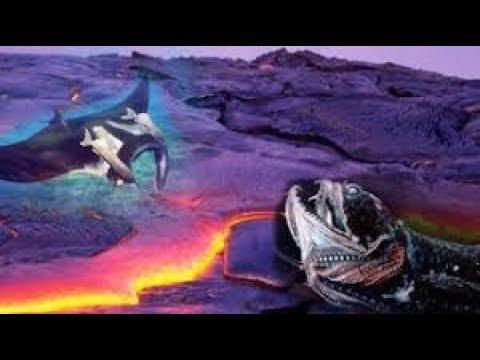 WOW GIMANA BISA BERTHAN HIDUP!! 5 Hewan Ini Hidup dan Bertahan di Dalam Lava