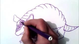 como dibujar un armadillo paso a paso | como dibujar un armadillo | facil