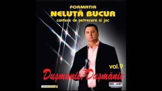 Neluta Bucur - Sarba (instrumental)