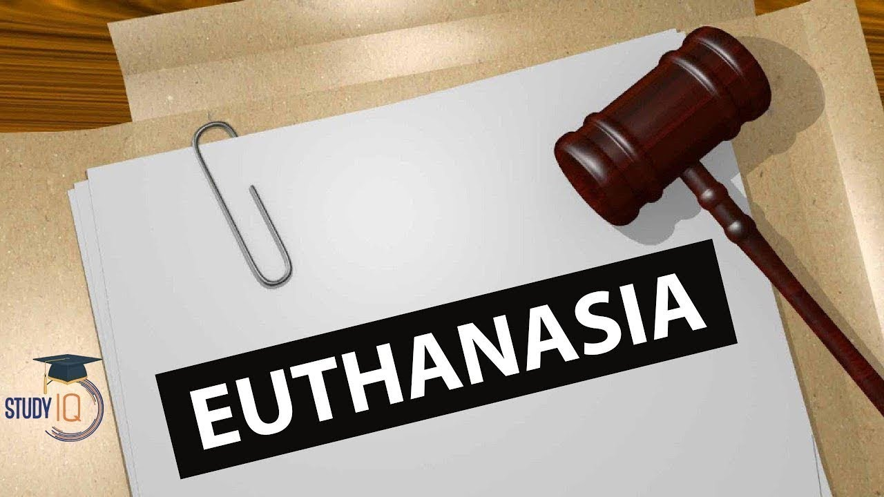 euthanasia the right to die essay The right of euthanasia must live on if we can put a dog or other animal down when they are suffering with a simple needle, but we have to watch the people.