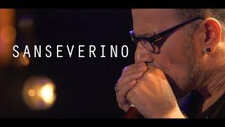 Astronaute - Sanseverino - Live @ Le Pont des Artistes