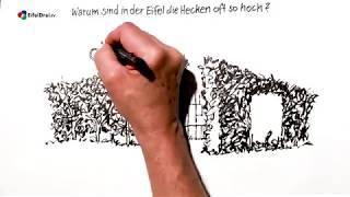 #EifelDrei.TV - Wir werden es Euch zeichnen (1)