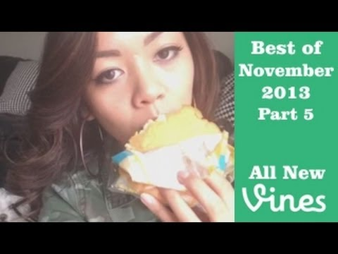 Best Vines of November 2013 - Compilation Part 5 (98 Total)