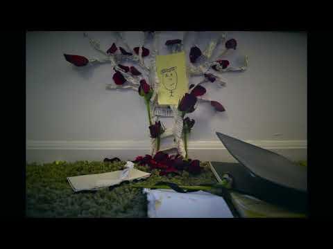 Hello Emerson - Ohio | Official Music Video