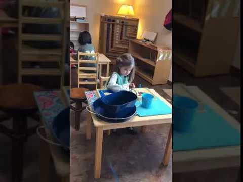 Early Childhood - Work Cycle