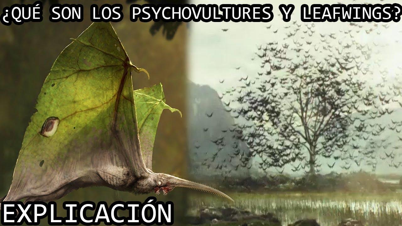 ¿Qué son los Psychovultures y los Leafwings? | Los Psychovultures y los Leafwings EXPLICADOS