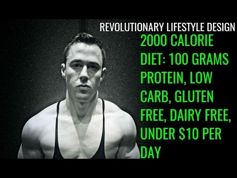 2000 Calorie Diet: 100 Grams Protein, Low Carb, Gluten Free, Under $10 Per  Day