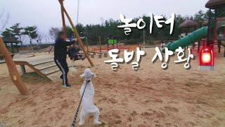 [애개육아]놀이터 브이로그
